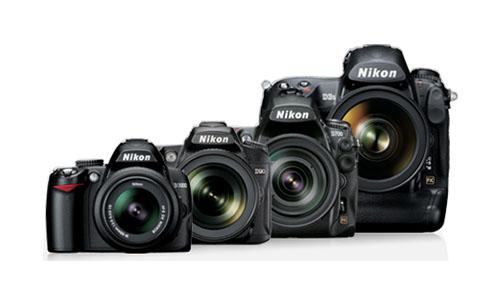 Nikon Dslr Photo Recovery Recover Photos Jpegnef